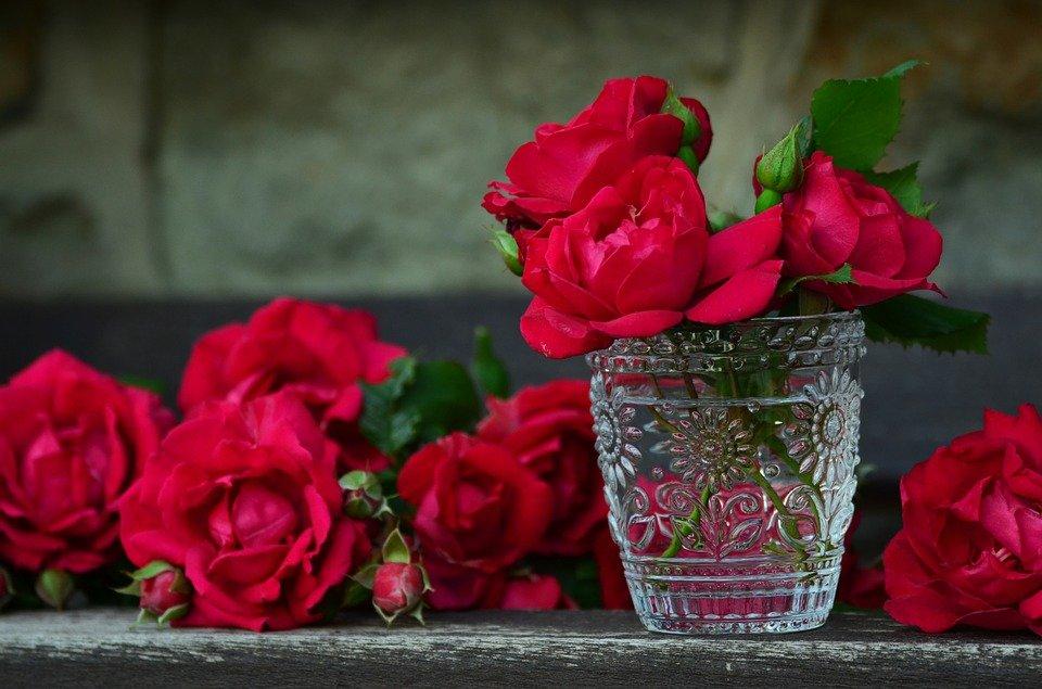 offrir les roses éternelles à un proche